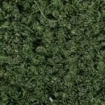Green %90